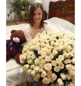 101 кремовая роза и мишка